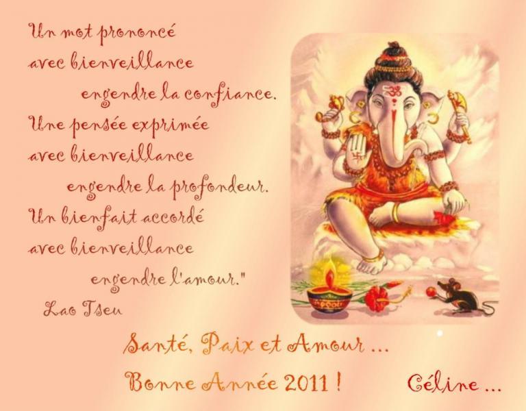 bonne année 2011 par Soleil2Vie ®