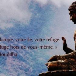 « Soyez votre propre lampe, votre île, votre refuge. bouddha -  soleil2vie