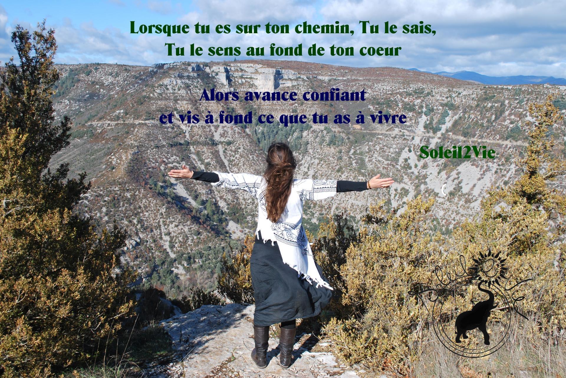 Vis ce que tu as à vivre - Céline Pérez