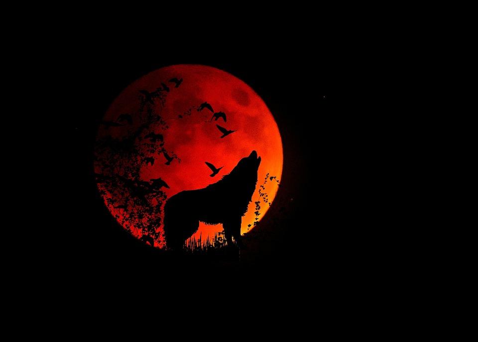 Full moon 1776051 960 720