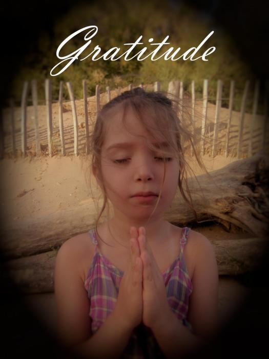 Gratitude soleil2vie