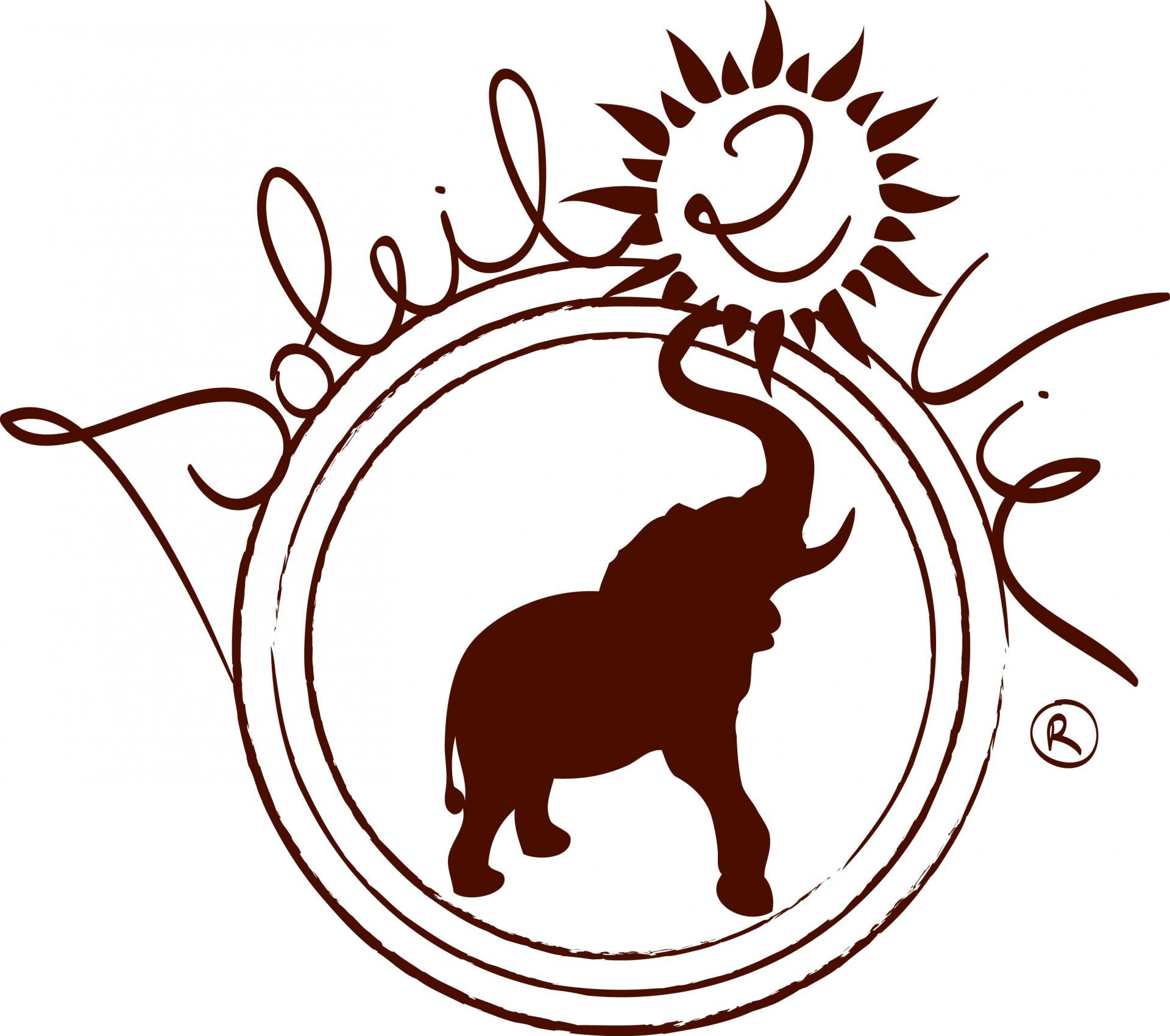 Logo soleil2vie