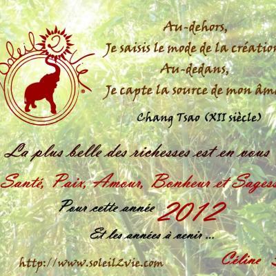 Bonne annee 2012 par soleil2vie